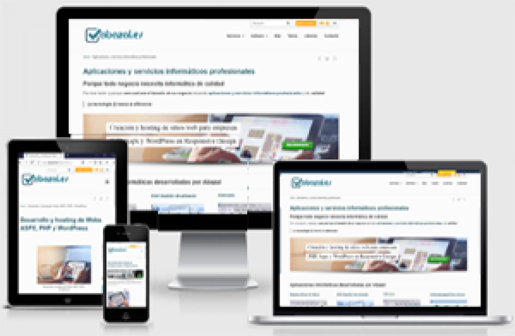 Desarrollo de Webs en NET  DevExpress y  WordPress