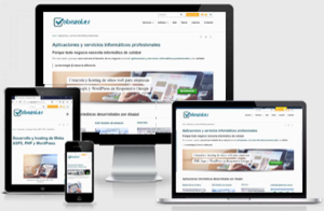 Desarrollo de Webs en NET  DevExpress y  WordPress